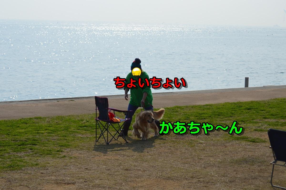 DSC_1293-020.jpg