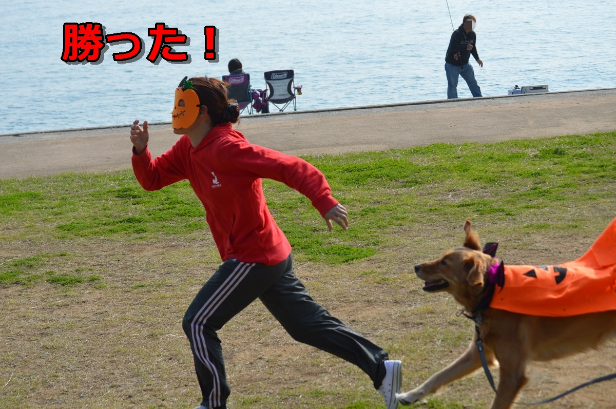 DSC_1303-030.jpg