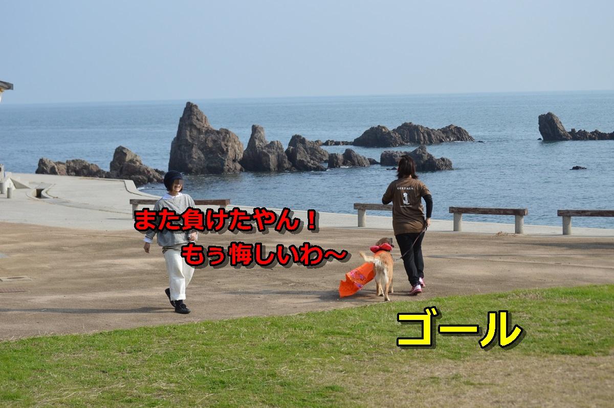 DSC_1324-051.jpg