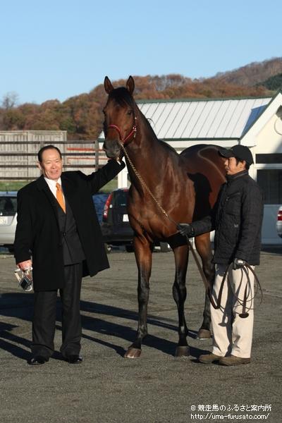 種牡馬入りした日本ダービー馬ロジユニヴァース