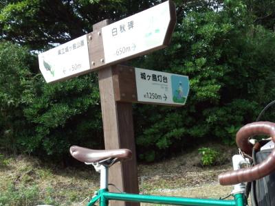 photo_randner_miura_jyougasaki_1_2013_06221.jpg