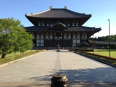 photo_randner_pota_nara_toudaiji_2013_0524.jpg