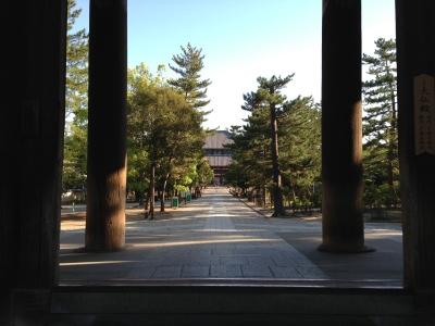 photo_randner_pota_nara_toudaiji_daibutuden_2013_0524.jpg
