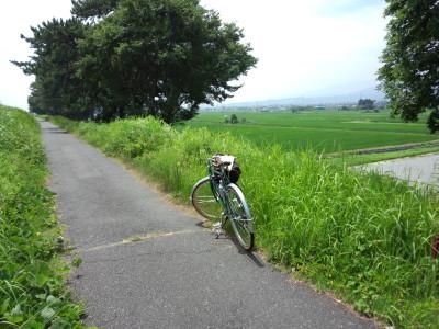 photo_randner_sakawagawa_sakurinnguroad_2_2013_0715.jpg