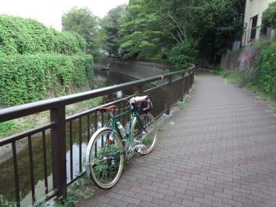 photo_randner_sennkawanogawa_senkawa_3_2013_0929.jpg