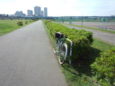 photo_randner_tamagawa_hiroba_2_2013_0601.jpg