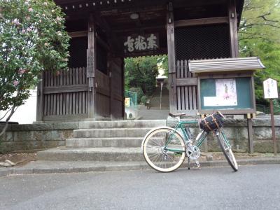 photo_randner_toufukuji_2013_0406.jpg