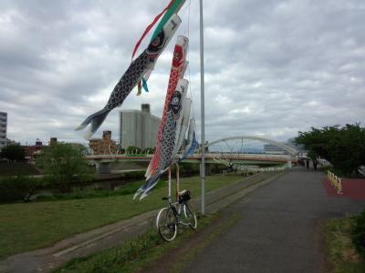 photo_randner_turumigawa_koinobori_2013_0503.jpg