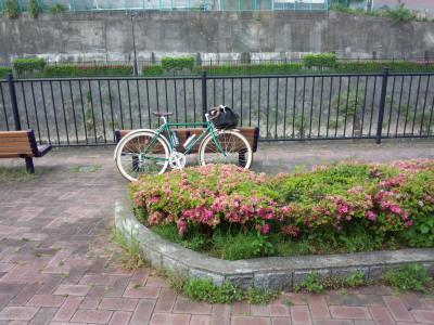 photo_randner_turumigawa_kouenn_2013_0503.jpg