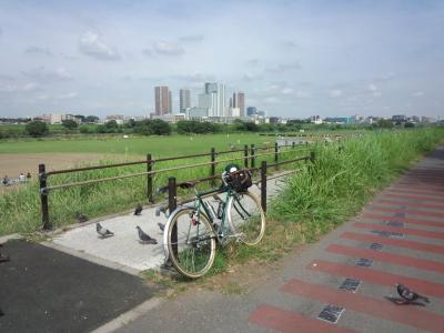 photo_randner_turumigawa_tamagawa_musasikosugi_2013_-720.jpg