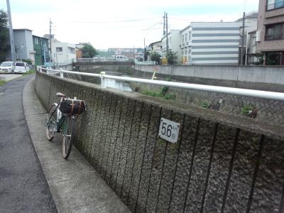 photo_randner_turumiyagamigawa_kawasuji_3_2013_0824.jpg