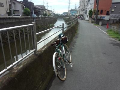 photo_randner_turumiyagamigawa_kawazuji_1_2013_0824.jpg