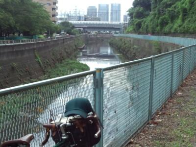 photo_randner_turumiyagamigawa_sinkansen_2013_082411.jpg