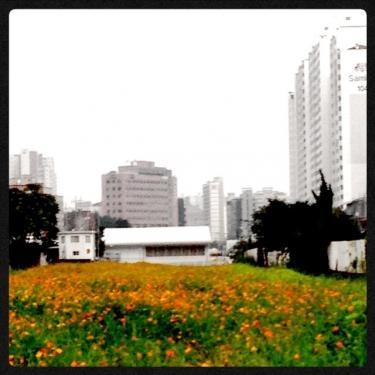image_20130802202520df7.jpg