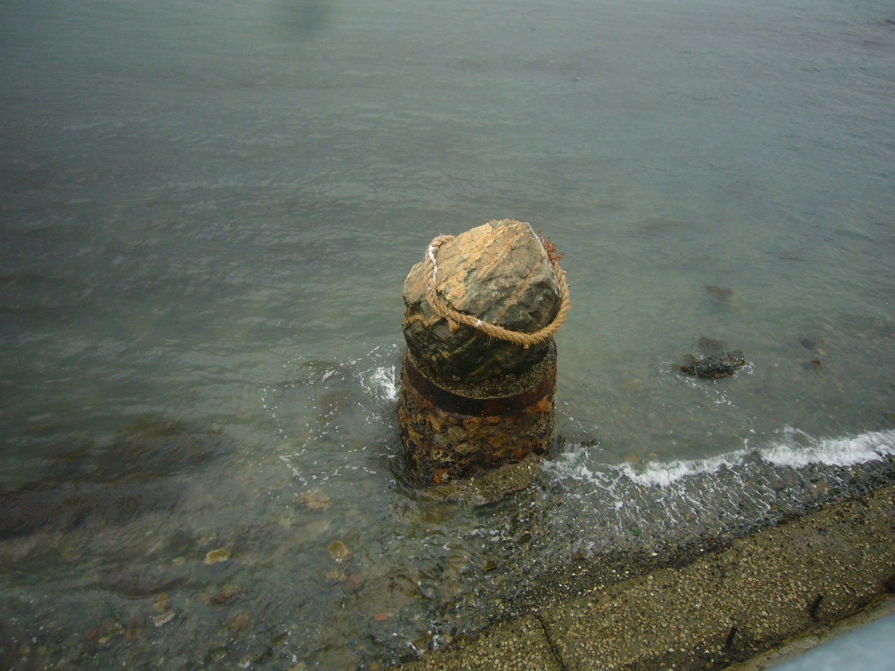 関門海峡で洗う H25.5.29
