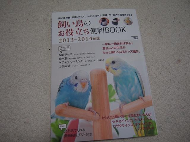 bP4260012.jpg