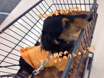fc2blog_20131117213954ed0.jpg
