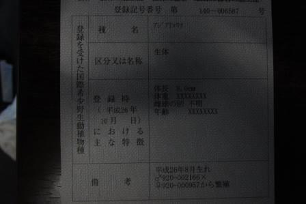 20141118142002dd9.jpg