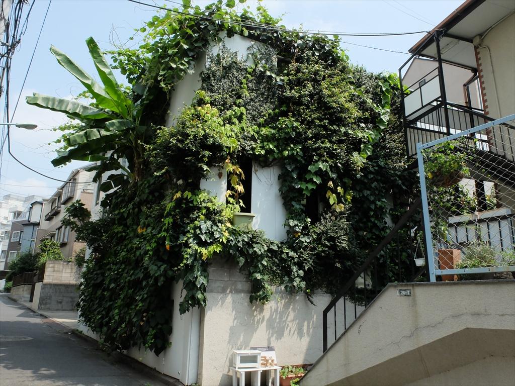 例のビルを覆う緑