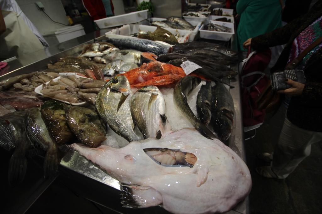ここの魚が一番美味しそうに見えた_1