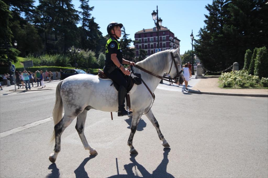 騎馬警官_1