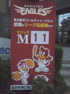 マジック11