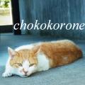 chokokorone
