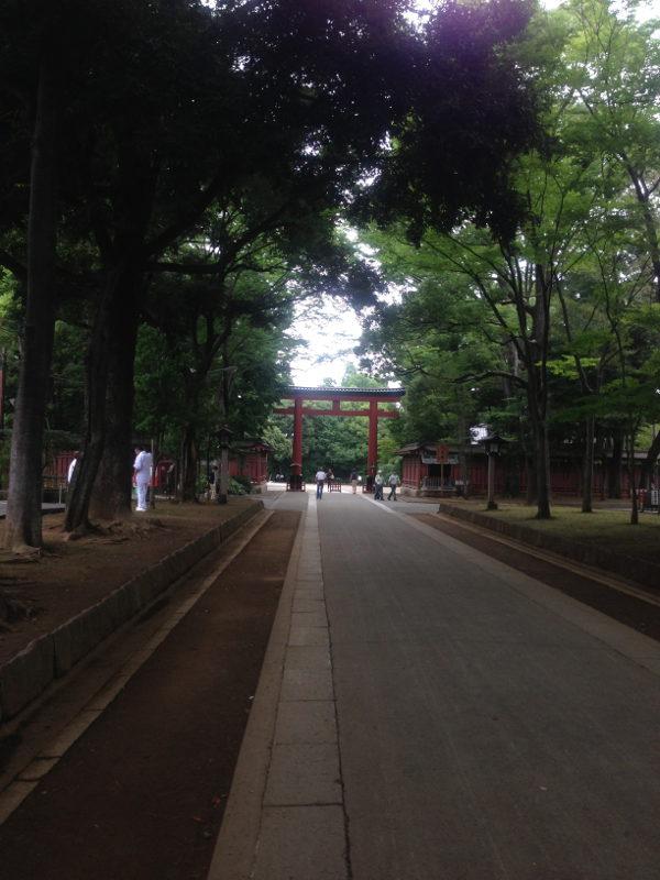 Omiya_Hikawa_Sando.jpg