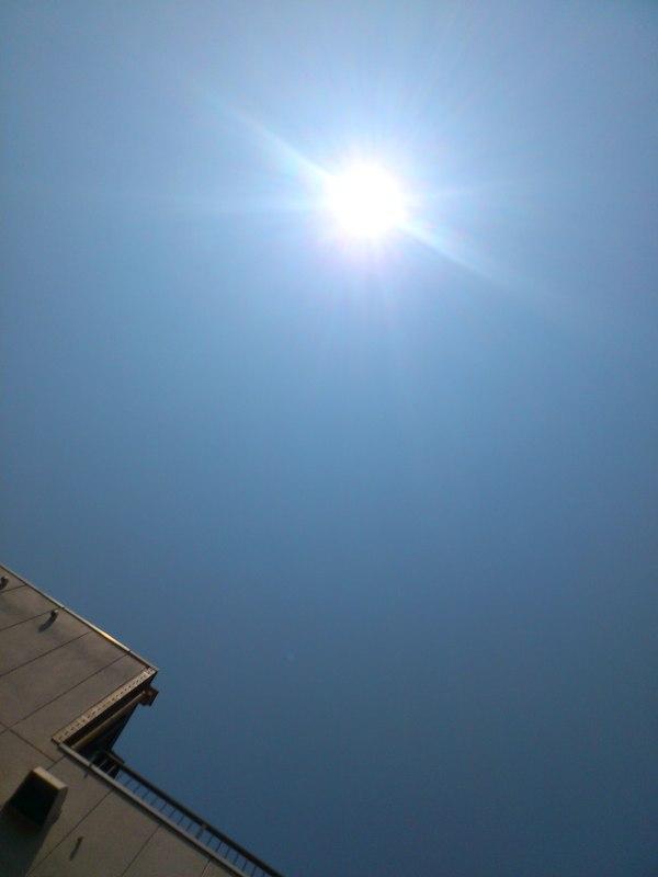 2013-08-06-DSC_0530.jpg