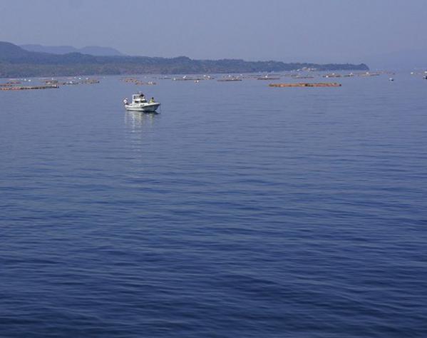 錦江湾02
