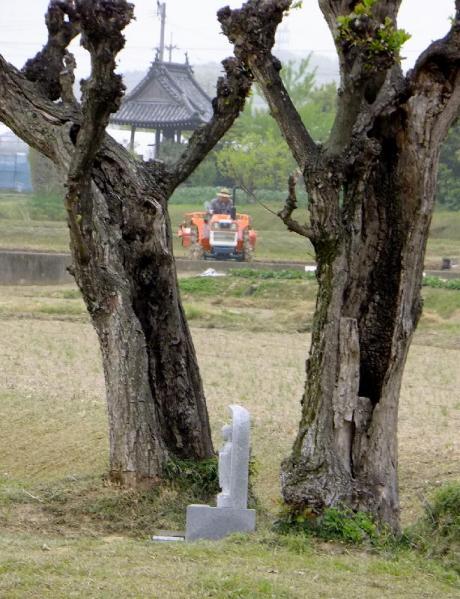 田起し03
