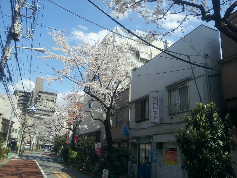 20120407-11.png