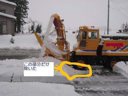 IMG_6039.jpg