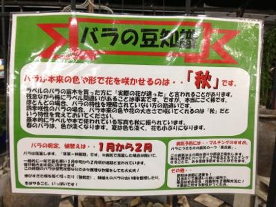 fc2blog_2013101712322628c.jpg