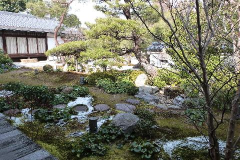 お庭 東林院