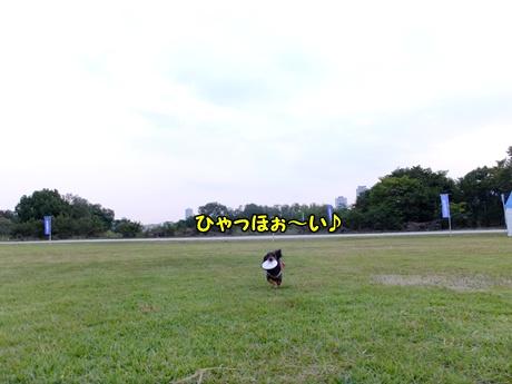S0037275.jpg