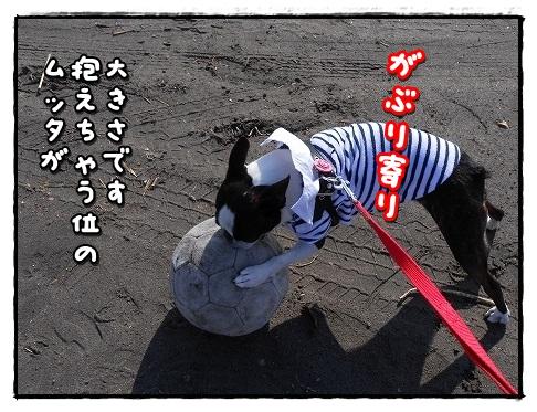 DSCN9069.jpg