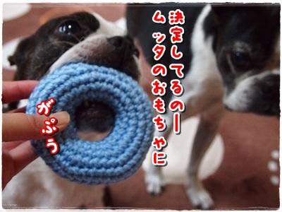PA015972.jpg