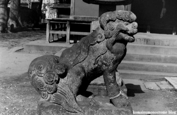 鷲宮神社(さいたま市岩槻区末田)3