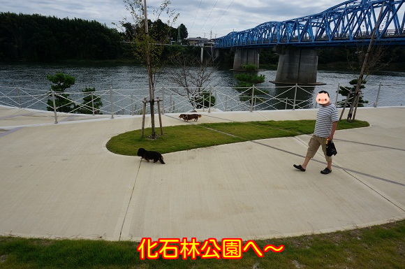 2014092921201572f.png
