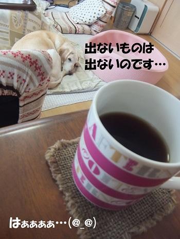 20140211144340bab.jpg