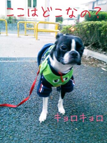 fc2_2013-04-27_17-28-33-154.jpg
