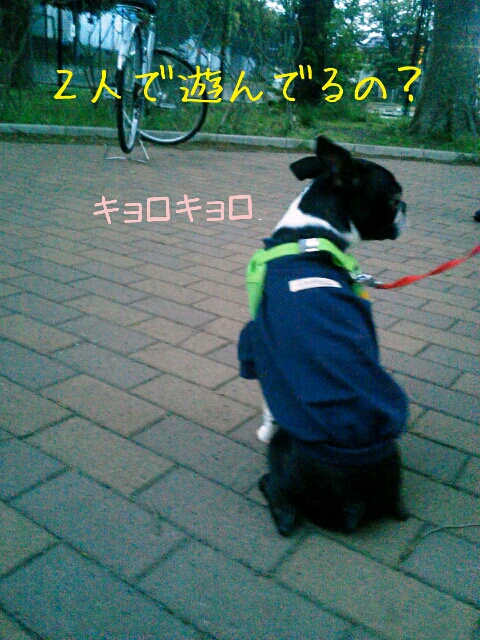 fc2_2013-04-27_17-43-23-859.jpg