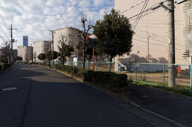 神奈川県営大庭団地のカーブする道と住棟