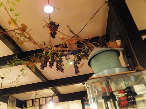 kofu-20130330-24s.jpg