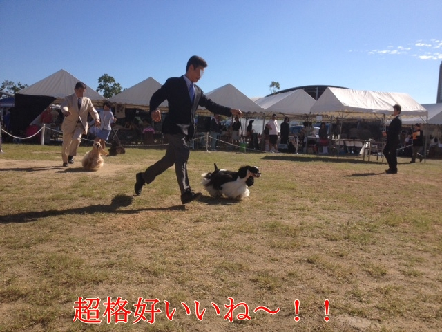 20131002074647a73.jpg