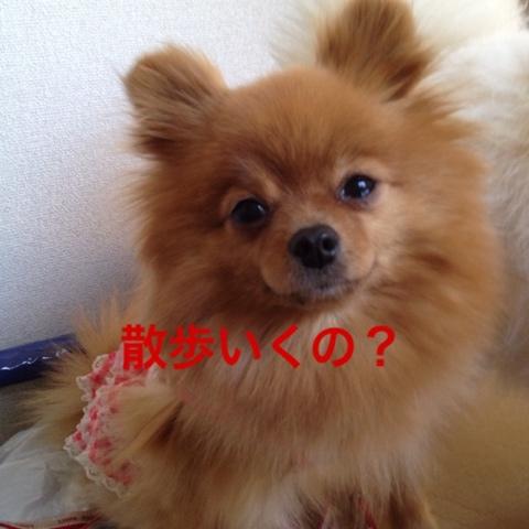 fc2blog_20130506195708e39.jpg