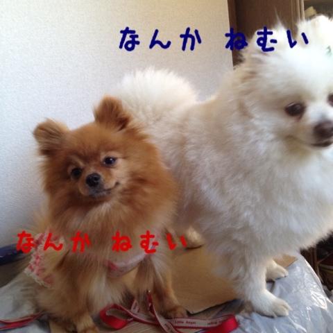 fc2blog_20130506195756d59.jpg