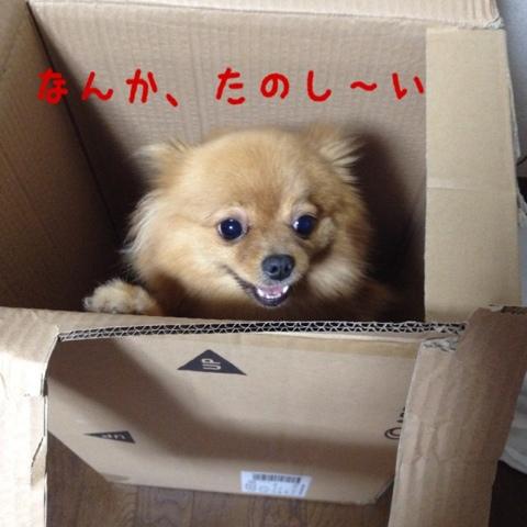 fc2blog_20130511201931abd.jpg