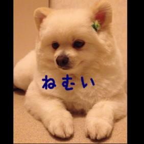 fc2blog_2013051720573946e.jpg